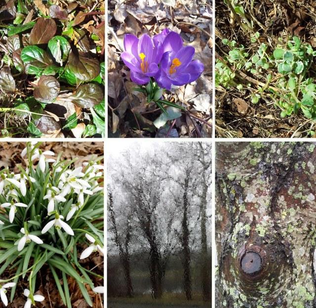 spring_sign